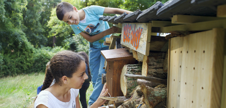 schoolkamp haarlem groepsaccommodatie